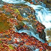 Mountain Stream Waterfall Autumn Poster