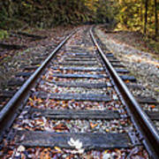 Mountain Tracks Poster