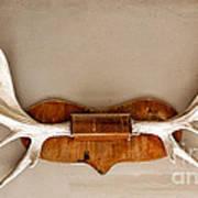 Mounted Elk Antlers Poster