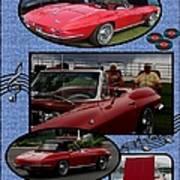 Mr. Sox Corvette Poster