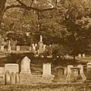 Mt Auburn Cemetery 13 Sepia Poster