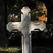 Mt Auburn Cemetery 9 Poster