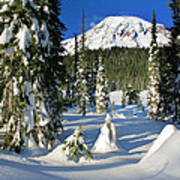 Mt Rainier At Reflection Lakes In Winter Poster
