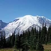 Mt. Rainier In August Poster