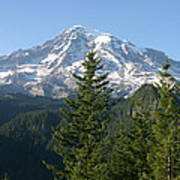 Mt. Rainier In Summer Poster
