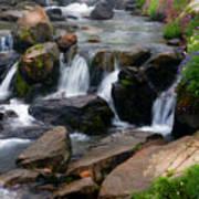 Mt Rainier Mountain Stream Poster