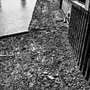 mud banks of the river thames and reinforced pilings at southwark London England UK Poster