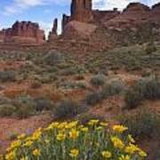 Mule Ears And The Three Gossips - 1 Poster