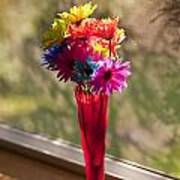 Multicolored Daisies On Window Sill Poster