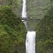 Multnomah Falls Up The Gorge Poster