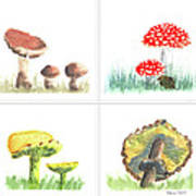 Mushrooms On Parade Collage Poster