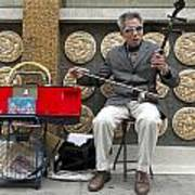 Musician In Chinatown In San Francisco Poster