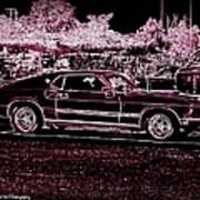Mustang Rose Poster