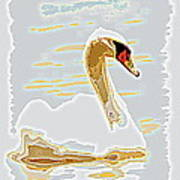 Mute Swan - Different Poster