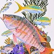 Mutton Snapper Reef Poster