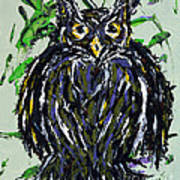 My Little Owl Poster