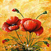 My Poppies 047 Poster