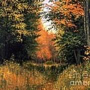 My Secret Autumn Place Poster by Michael Swanson