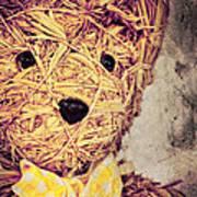 My Teddy Bear Poster