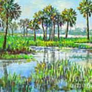 Myakka Lake With Palms Poster