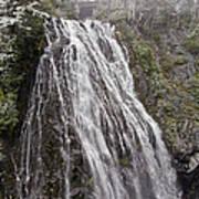 Narada Falls Mt Rainier Poster