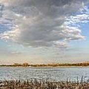 Narew River Near Serock In The Vicinity Of Warsaw Poster