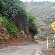 Narrow Road - North Maui Poster