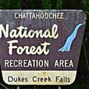 National Forest Recreation Area Poster