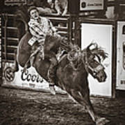 National Stock Show Bareback Riding Poster by Priscilla Burgers