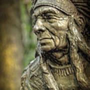 Native American Statue At Niagara Falls State Park Poster