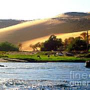 Natura E Deserto Poster