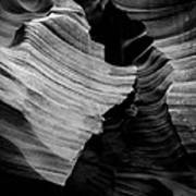 Natural Beauty Of Antelope - Black And White Poster