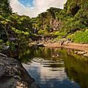 Natural Pool - The Beautiful Scene Of The Seven Sacred Pools Of Maui. Poster