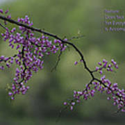 Nature Does Not Hurry Blossoms In Purple Poster