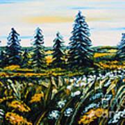 Nature Landscape Field Flowers Pines Art  Poster by Drinka Mercep