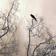Nature Raven Crow Trees - Surreal Fantasy Gothic Nature Raven Crow In Trees Sepia Print Decor Poster