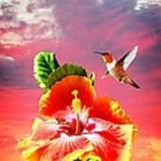 Nature's Beauties Poster