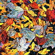 Nature's Tapestry Poster