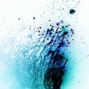 Negative Fireworks Poster by Sharon Lisa Clarke