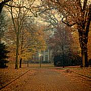 Neighborhood Street In Autumn Poster