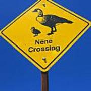 Nene Crossing Sign Haleakala National Park Poster