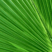 Neon Palm Reader Poster
