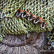 Nets And Knots Number Three Poster by Elena Nosyreva