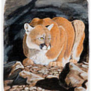 Nevada Cougar Poster