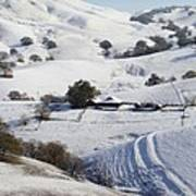 Never Snows In California Poster