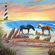 New Day - Hatteras Poster