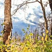 New Generation - Mixed Media - Casper Mountain - Casper Wyoming Poster