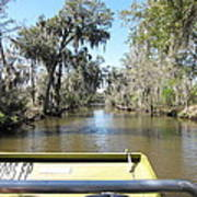 New Orleans - Swamp Boat Ride - 1212122 Poster