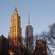 New York City Skyline Through The Trees Poster