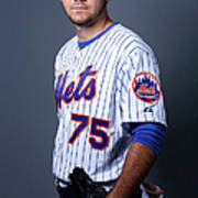 New York Mets Photo Day Poster